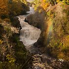 Reekie Lynn in Autumn by Cliff Williams