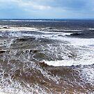 Wind and Sea by Jann Ashworth