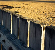 The Fence by JoshDavies