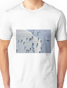 Sea Shells at the Beach Unisex T-Shirt