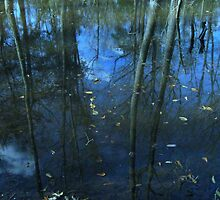 Nature's Mirror© by walela