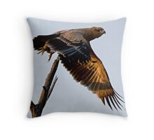 Tawny Eagle In Flight Throw Pillow