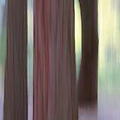 Yosemite Impression by Anne McKinnell