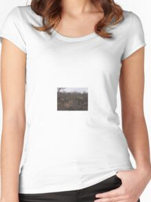 Elephant Herd 2, Limpopo, South Africa Women's Fitted Scoop T-Shirt