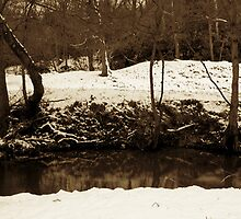 Snowy River by StefanFierros