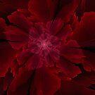 Flor de la Lujuria by Jaclyn Hughes