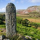standing stone by conalmcginley