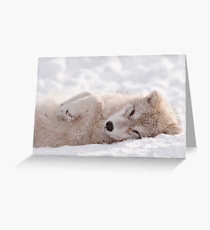 Sleepy Time Greeting Card