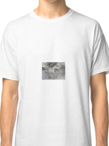 Kudu Mother and Child, Limpopo, South Africa Classic T-Shirt
