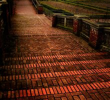 Follow the Yellow Brick Road by lucin