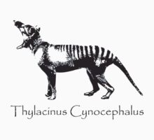 Tasmanian Tiger - Thylacine by Simon Williams