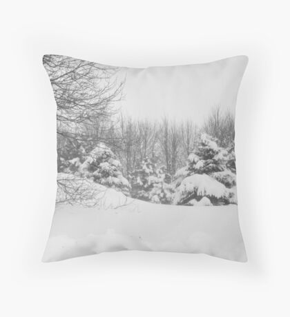 Winter scape Throw Pillow