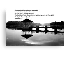 Peirce water bw Canvas Print