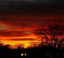 Sunset Ride by Carla Jensen