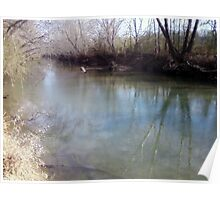 Ohatchee Creek in January Poster
