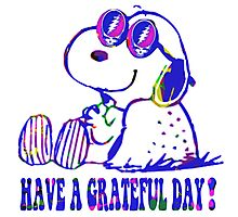 snoopy grateful day Photographic Print