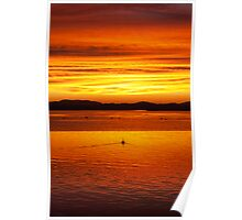 Pelican sunset - Forster / Tuncurry Lakes Poster