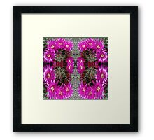 Butterfly of Circled Cactus Framed Print