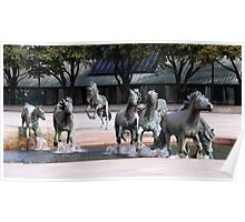 The Mustangs Of Las Colinas Poster