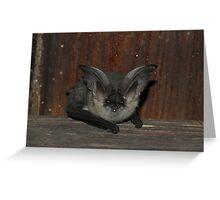 Slovenia Bat Greeting Card