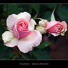Pink Roses - - Posters & More by Maria A. Barnowl