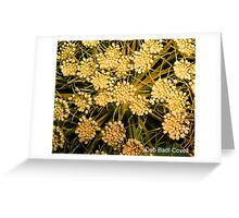 Dainty - In Pale Orange-Yellow Greeting Card