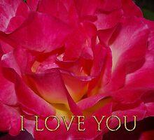 i love you rose by dedmanshootn