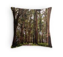 Dandenong Ranges National Park - Mountain Ash Throw Pillow