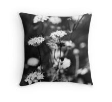 Black and White Lace Throw Pillow