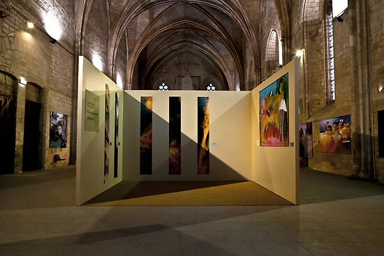 Art expo at the Palais des Papes by Stefan Stuart-Fletcher