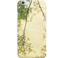 Spring foliage iPhone Case/Skin