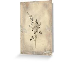 Little One Stands Alone © Greeting Card
