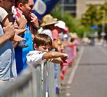 Fan by the Fence by Helen Vercoe