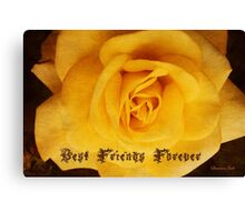BFF ~ Best Friends Forever Canvas Print