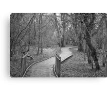 Winter Pathway Canvas Print