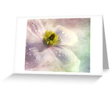 Pastel shades    Clematious Greeting Card
