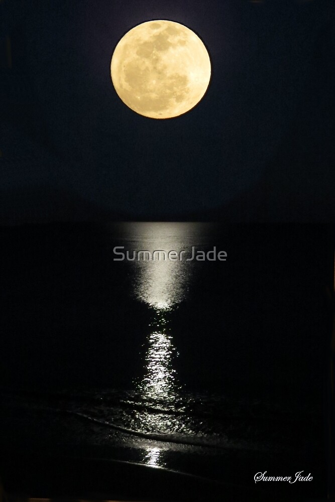 Ocean ~ By the Light of the Moon by SummerJade