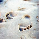 Leaving Your Mark © Vicki Ferrari by Vicki Ferrari