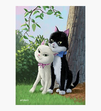 two romantic cats in love Photographic Print