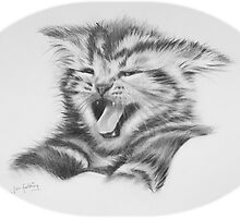 Sour puss. Kitten by jan farthing