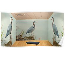 The Great Blue Heron Room Poster