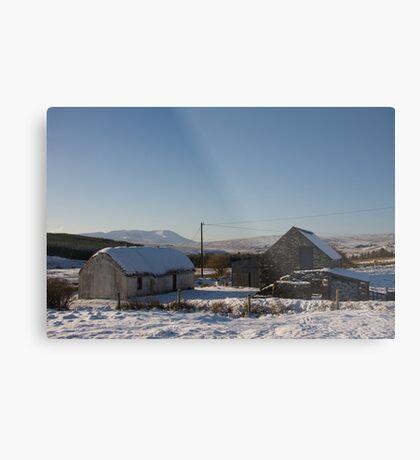 leamagowra winter Metal Print