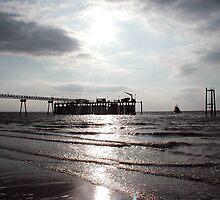 Spurn Head Pier by Paul  Green