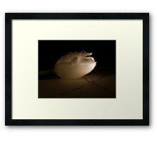 Velvia Framed Print