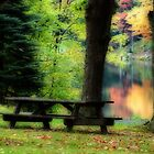 A Picnic Bench Alone by vigor