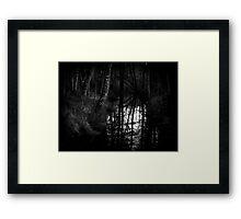 Shadow and Reflection - DelamereForest Framed Print