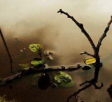 Overcast II by Aaron Baker