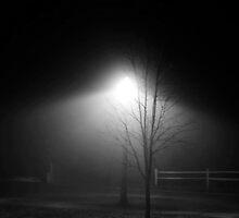Foggy Nights by vanessb1993