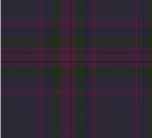 00252 Spirit of Scotland Tartan  by Detnecs2013