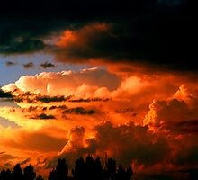 Storm cloud of the 21st Century by Lee Gunderson